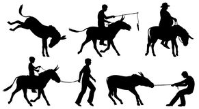 Donkeys. Set of editable vector silhouettes of donkeys and people in different situations with all figures as separate objects Royalty Free Stock Photos