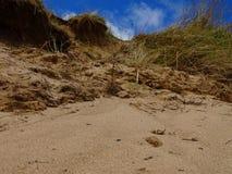 Donmouth Locak naturreserv som är norr Arkivfoto