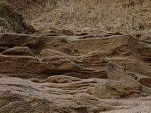 Donmouth Locak naturreserv som är norr Arkivbilder