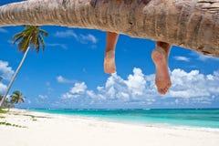 Donna abbronzata che si siede su una spiaggia bianca della sabbia della palma Immagine Stock