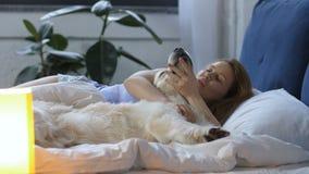 Donna adorabile con il cane di labrador che sveglia a letto stock footage