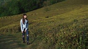 Donna affascinante che cammina nel grande campo stock footage