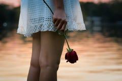 Donna affranta che tiene una rosa Fotografia Stock Libera da Diritti