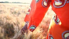 Donna africana in vestiti tradizionali che cammina con la sua mano che ritiene i raccolti in un campo dell'azienda agricola in Af video d archivio