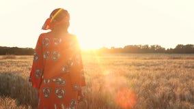 Donna africana in vestiti tradizionali che stanno in un campo dei raccolti al tramonto o all'alba video d archivio