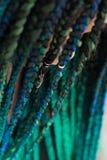 Donna afroamericana con bello Teal Green Blue Braids fotografia stock libera da diritti