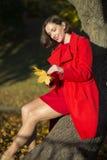 Donna agli insiemi del parco delle foglie di acero Fotografia Stock