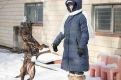 Donna all'aperto in neve con il cane fotografia stock libera da diritti