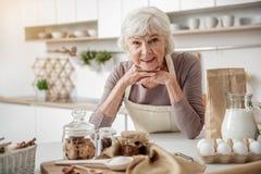Donna anziana allegra che cucina a casa Fotografia Stock