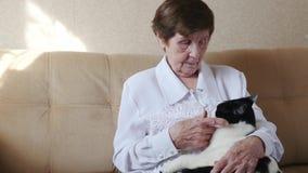Donna anziana che segna un gatto, nonna che gioca con un gatto stock footage