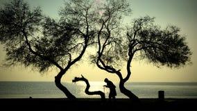 Donna anziana degli alberi e della gente che cammina su una canna Immagini Stock