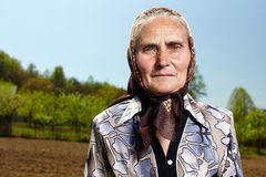 Donna anziana dell'agricoltore Fotografie Stock