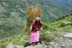 Donna anziana nepalese nel Nepal Fotografie Stock