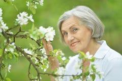 Donna anziana piacevole immagine stock libera da diritti
