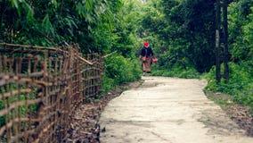 Donna anziana sul percorso attraverso il legno immagini stock