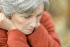 Donna anziana triste piacevole Immagini Stock Libere da Diritti