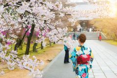 Donna asiatica che porta kimono giapponese tradizionale nel giardino di sakura in tempio Kyoto, Giappone fotografie stock