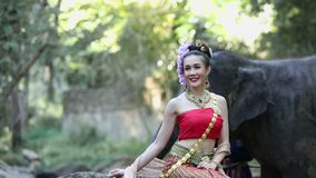 Donna asiatica con l'elefante in insenatura, Chiang Mai Tailandia archivi video