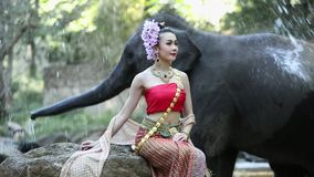 Donna asiatica con l'elefante in insenatura, Chiang Mai Tailandia video d archivio