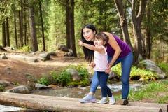 Donna asiatica con la sua piccola figlia nel legno vicino al fiume che sta su un ceppo fotografia stock libera da diritti