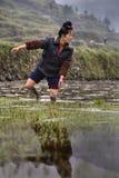 Donna asiatica dell'agricoltore che cammina a piedi nudi attraverso il fango delle risaie Fotografie Stock Libere da Diritti