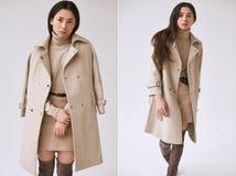Donna asiatica elegante in cappotto di lana alla moda e gonna classica immagine stock