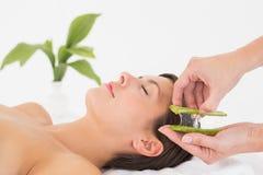Donna attraente che riceve massaggio di vera dell'aloe al centro della stazione termale Fotografie Stock Libere da Diritti