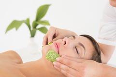Donna attraente che riceve massaggio di vera dell'aloe al centro della stazione termale Immagine Stock