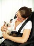 Donna attraente di affari con gattino Immagini Stock Libere da Diritti