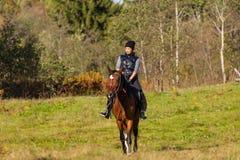 Donna attraente elegante che guida un prato del cavallo Immagine Stock Libera da Diritti