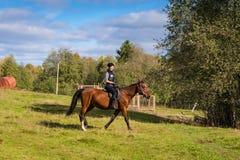 Donna attraente elegante che guida un prato del cavallo Fotografie Stock