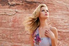 Donna attraente in vestito fotografie stock libere da diritti