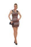 Donna attraente in vestito animale dalla stampa Fotografie Stock Libere da Diritti