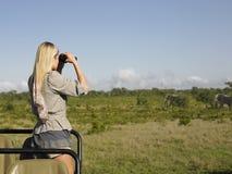 Donna bionda che guarda tramite il binocolo in jeep Immagini Stock