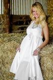 Donna bionda della ragazza vestita come il paese o cowgirl dell'azienda agricola immagine stock libera da diritti