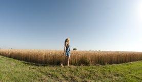 Donna bionda e un campo di frumento Fotografie Stock Libere da Diritti