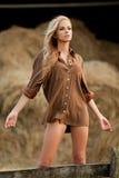 Donna bionda sexy in scuderia Immagine Stock