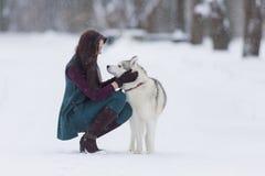 Donna castana che guarda occhio per osservare con il suo Husky Dog adorabile nella foresta di inverno Immagini Stock