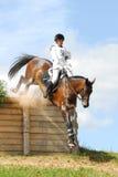 Donna a cavallo sul salto del cavallo rosso della castagna Fotografia Stock Libera da Diritti