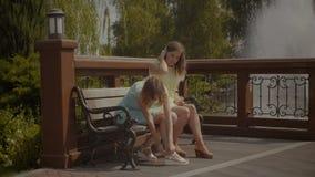 Donna che applica il gesso della bolla sul piede danneggiato stock footage