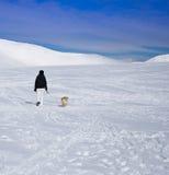Donna che cammina con il cane in neve Immagine Stock