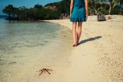 Donna che cammina dopo una stella marina sulla spiaggia Immagine Stock