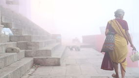 Donna che cammina giù il bacino nebbioso di Gange mentre i cani vanno in giro stock footage
