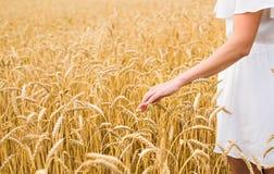 Donna che cammina nel concetto del frumento circa la natura, l'agricoltura e la gente Fotografia Stock