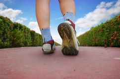 Donna che cammina nel parco, scarpa di sport Fotografie Stock