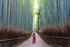 Donna che cammina nella foresta di bambù, Arashiyama, Giappone immagine stock