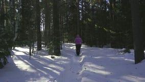 Donna che cammina nella foresta di inverno stock footage