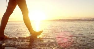 Donna che cammina sulla spiaggia durante il tramonto archivi video