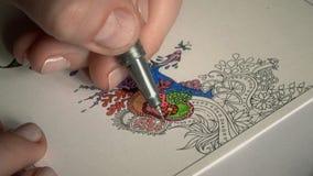 Donna che colora un anti primo piano della mandala di sforzo stock footage