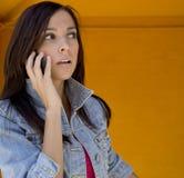 Donna che comunica sul telefono delle cellule Fotografie Stock